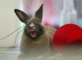 YAWN by Pollito-is-Artzy