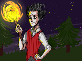 dont starve by RinChouko98