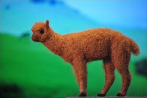 Felted Alpaca by nikkiburr