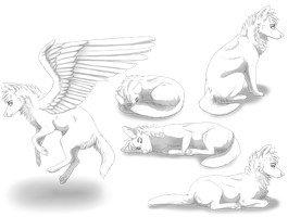 Free Wolf Poseset by sippet