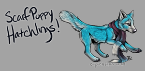 Scarf Puppy Hatchlings! [Egg #2] by CoyoteAdopts