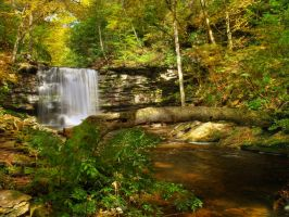 Ricketts Glen State Park 53 by Dracoart-Stock
