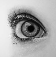 eye drawing 2 by hg-art