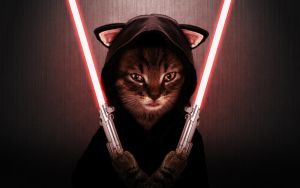 Sith Kitteh by Shopjob