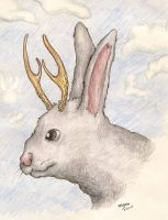 Jackalope by fossilapostle