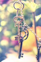 Secret Key by shehera-Zade