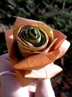 Leaf rose by Dea-Art
