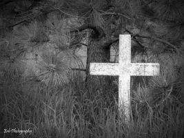 Forgotten by erbphotography