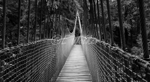 Rope Bridge by LittleMissMischief