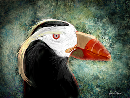 Tufted Puffin by altergromit