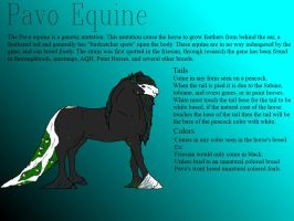 Pavo Equine by Justalittlelost