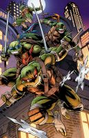 Teenage Mutant Ninja Turtle by RossHughes