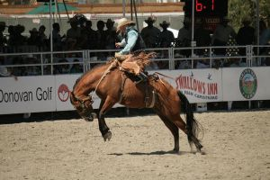 rodeo 70 by xbr0kendevotion