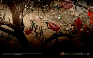 Off Season Autumn by aash