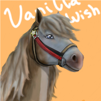 Star Stable online - VanillaWish by Samantha-8
