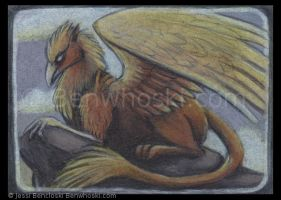 ACEO Golden Gryphon by benwhoski