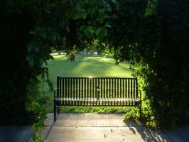 Park Bench 3 by abuseofstock