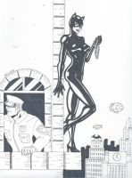 Catwoman-Thief in the Night by RobertMacQuarrie1