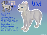 Vivi character sheet 2 by Cavachon