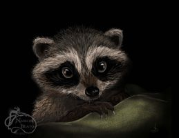 Portrait of a baby Raccoon by NadilynBeato