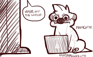 Off The Laptop by Ottermelon