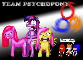 MLP FIM: Team Psychopony by HolyThorn667