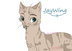 Jaywing quick doodle by Kimchiitazztic