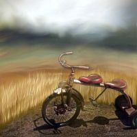 Tricycle Built for Two...a hummarcus collaboration by hummbuzz