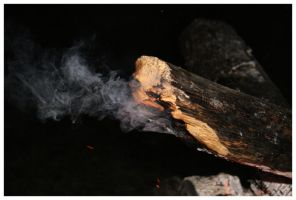 Smoked Wood by NOS2002