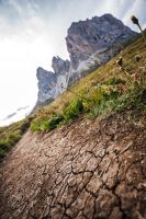 the path into the mountains by stachelpferdchen