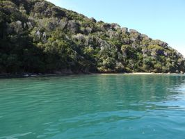 New Zealand 2014- bay 1 by Carlie-NuclearZombie