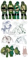 AU Turtles by 10yrsy