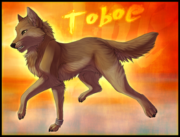 Toboe - Shadding Practice by Sethya