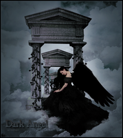 ..Dark Angel.. by w-melon