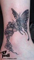 Butterfly and flover by Pedi