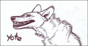 Yote Grin by nikkiburr