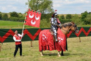 Kenilworth Castle Joust 2014 (74) by masimage