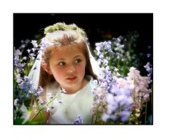 Among the Bluebells by PicTd