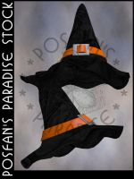 Wizard/Witch Hats 003 by poserfan-stock