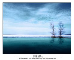 Dead Lake by MKO