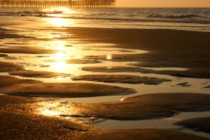 Golden Tidepools by andrewsgirl123