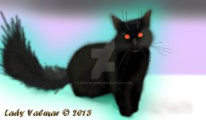 The Black Cat - Seraphenia by ladyvalmar