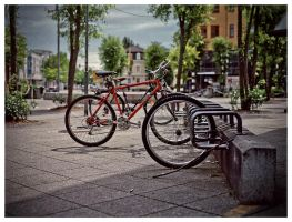Bicycle Thief by grixpix