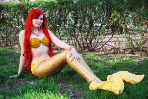 Golden Ariel 1 by Usagi-Tsukino-krv