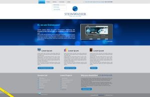 SteinWasser website final by anca-v