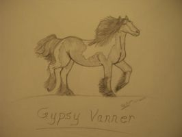 Gypsy Vanner Drawing by HirokoChan