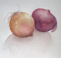 Onions by Alithographica