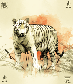 Chinese Tiger - Eternity by lollipopdesign