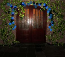 Magical Door Premade Background by FractalBee
