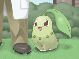 CHIKORITA by ztak1227